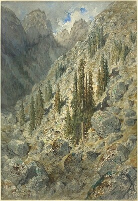 An Alpine Valley with Trees and Boulders
