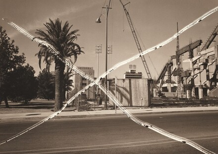 Tucson Palm [From the series Cancellations]