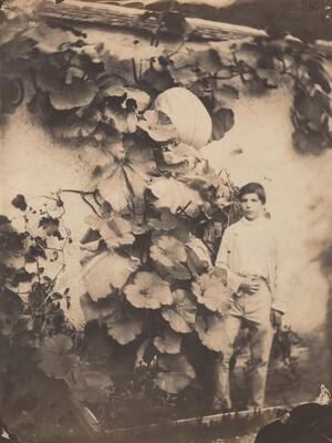 Boy with a Pumpkin Vine