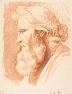 Head of a Venerable Man