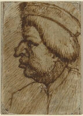 Profile of a Man