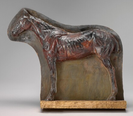 Ecorché: Relief of a Horse (Josephine)