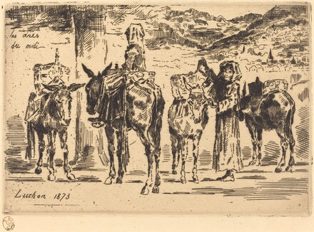Feuilles d'Anes du Midi (Sheet of Donkeys from the South)