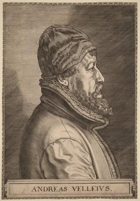 Andreas Velleius (Anders Sorensen Vedel)