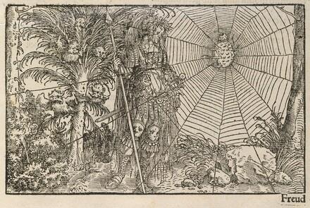Von der Artzney bayder Glück (De Remediis Utriusque Fortuna) (On the Remedies of Good and Evil Fortune)