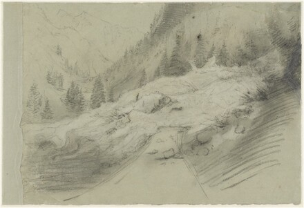 Avalanche in an Alpine Landscape