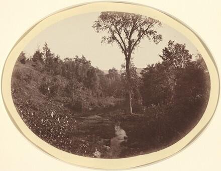 Landscape near Williams College