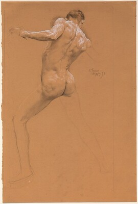 Standing Male Nude from Behind