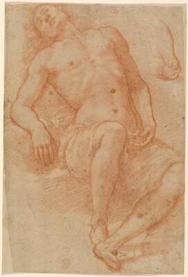 A Male Nude, Half Reclining