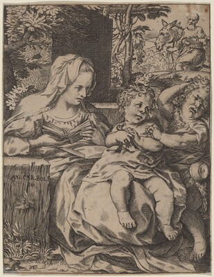 The Madonna of the Swallow