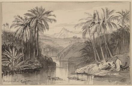 Avisavella, Ceylon