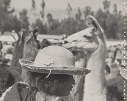 Peru p. 14