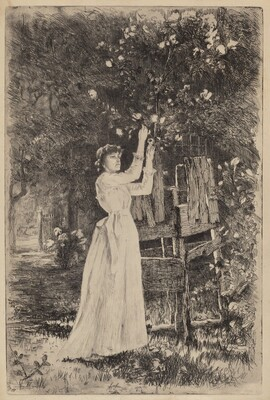 Untitled (Woman Picking Blossoms)