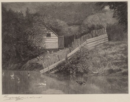 A Duck Pond