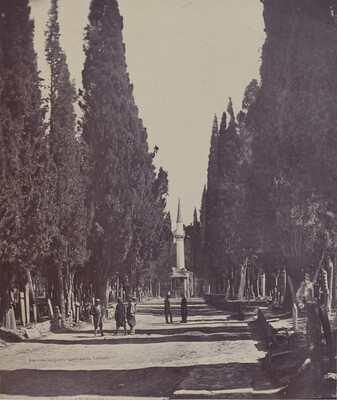 Vue dans le Grand Cimetière de Scutari (Scene in the Large Cemetery of Scutari)