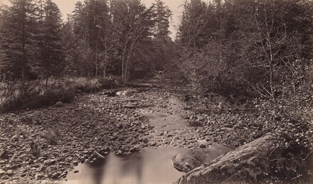 Marion River at Bassett's Camp