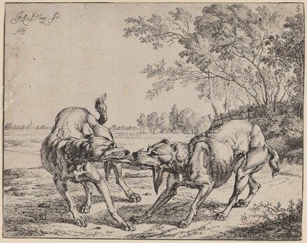 The Disputed Meat (La viande disputé)
