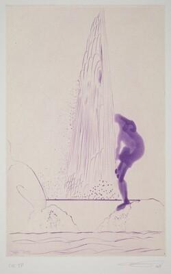 Rainbow - Violet Narcissus