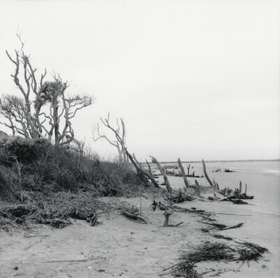 Folly Beach, South Carolina, 1999