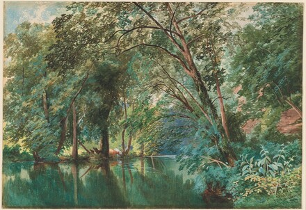 Trees over the River Frome at Stapleton