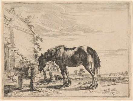 A Horse Bound to a Feeding Trough