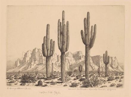 Desert Sentinels - Apache Trail - Arizona