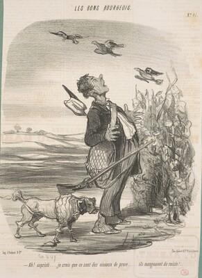 Ah! ... Je crois que ce sont des oiseaux de proie ...