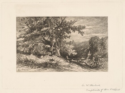 Landscape with Fallen Tree