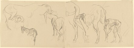 Studies of Horses and Men Shoeing Horses [recto]