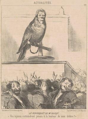 Le perroquet de M. Guizot