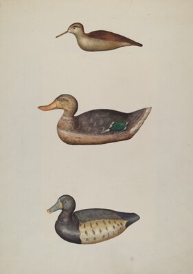 Three Decoy Ducks