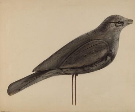 Decoy (Gull)