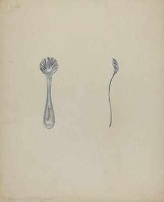 Silver Salt Spoon
