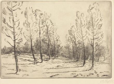 Avenue of Poplars (L'allee de peupliers)