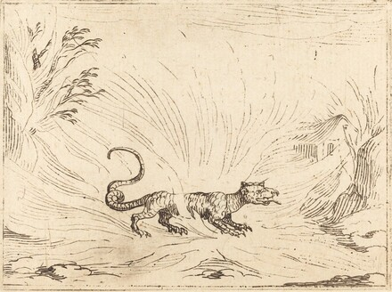 Salamander Surrounded by Flames