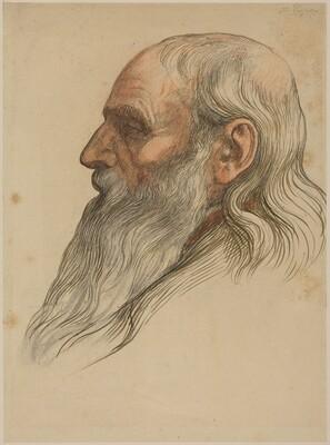 Study of a Man's Head with a Full Beard