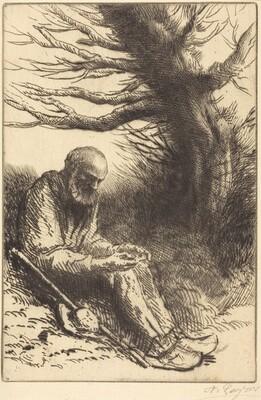 Old man, Old Tree (Vieil homme, vieil arbre)