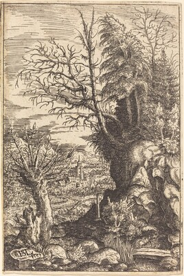 Landscape with a Willow