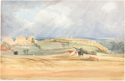 Landscape with Cattle (Somerset?)