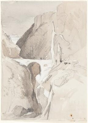 Gorge with Tree Stumps