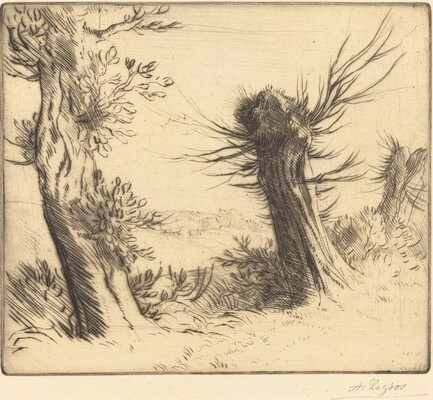 Willows (Les saules)