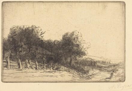 Landscape (Un paysage)