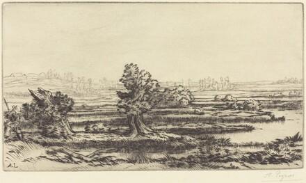 Peat-bogs (Les Tourbieres)