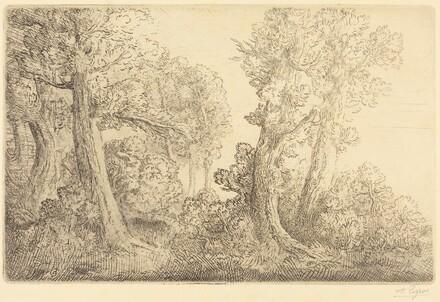 Near the Woods, Veronne (Pres du bois, Veronne)