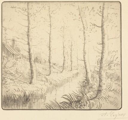 Birch Trees along the Water (Les bouleaux: Bord de l'eau)