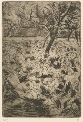 The Cabbage Field (Le champ de choux)