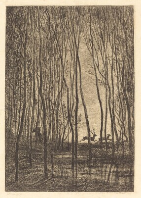 Deer in the Woods (Les Cerfs sous bois)