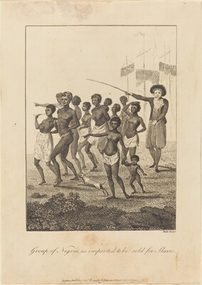 Group of Negros, as imported to be sold for Slaves
