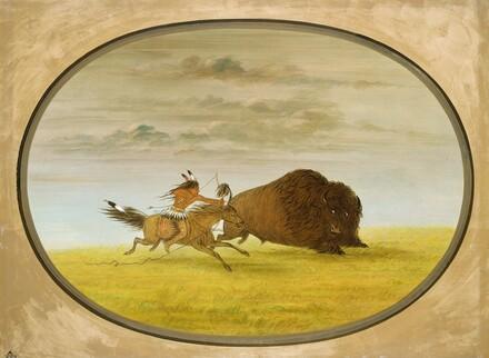 Buffalo Chase