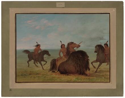 Camanchees Lancing a Buffalo Bull